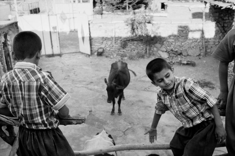 Het dorp Saoji ligt niet ver van Iraaks Koerdistan, maar de grens is gesloten. Khelan en Adnan wonen in het dorp met hun drie zoons.