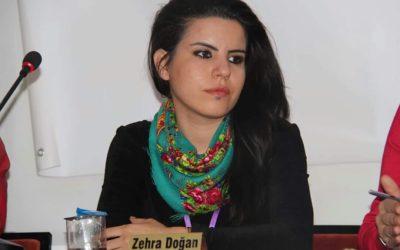 Defend the Defenders – Zehra Doğan